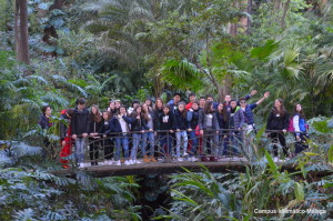 Campus Idiomático group travels to Málaga with Spanish classes and activities