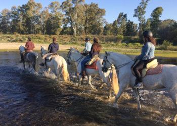 Campus Idiomatico Malaga- Spanish Courses-Spanischkurse-Cursos de Español - Activities-Aktivitäten-Actividades Horse Riding