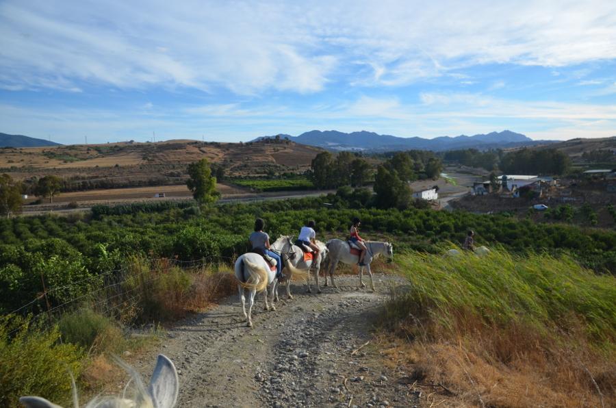 campus-idiomatico-cursos-de-espanol-en-malaga-montar-a-caballo-rancho